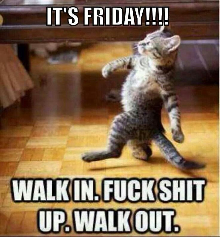 Thank God Its Friday Pictures Funny 18 Funny Pictures Memes Comics